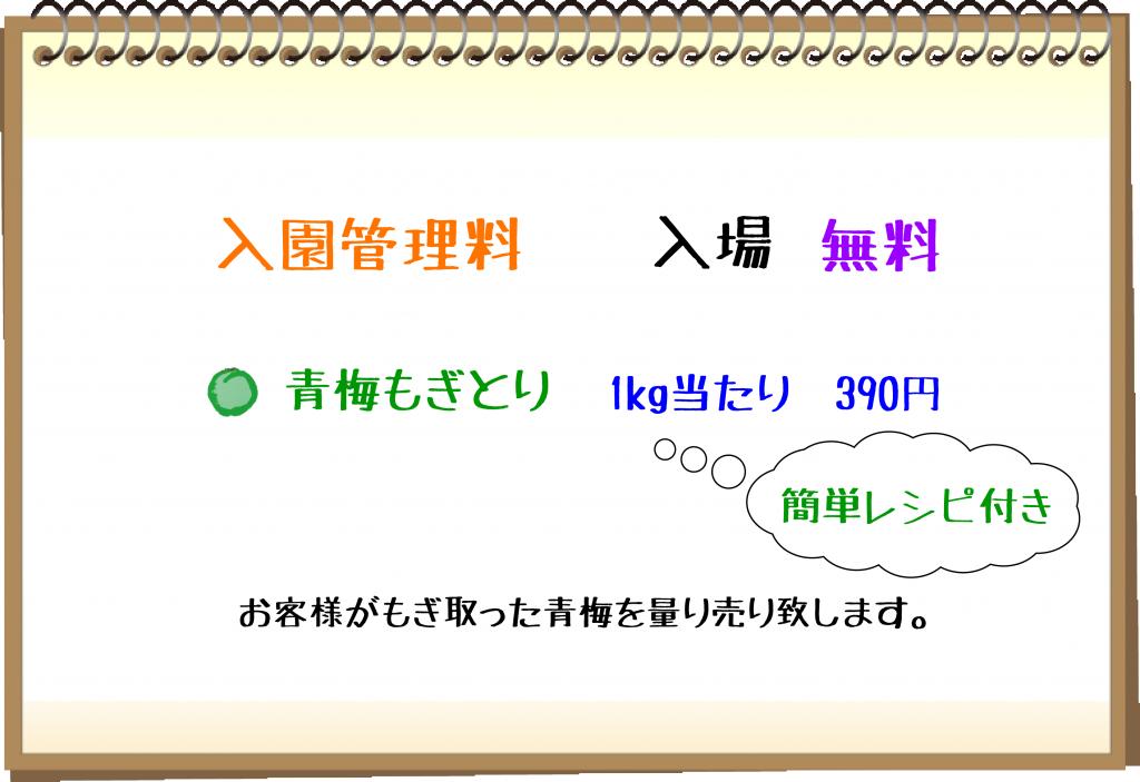 梅もぎ入園・もぎ取りコース02